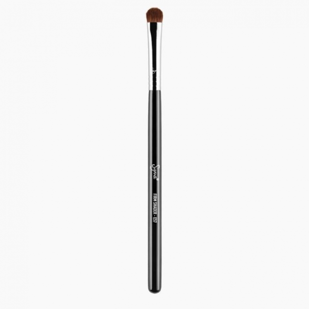 E57 -FIRM SHADER BRUSH  眼影刷 2